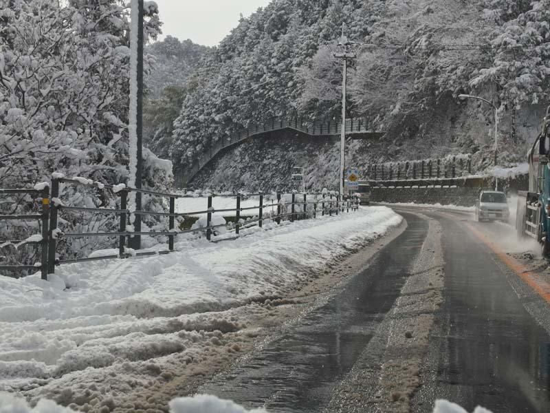 大雪 2_d0127876_234271.jpg