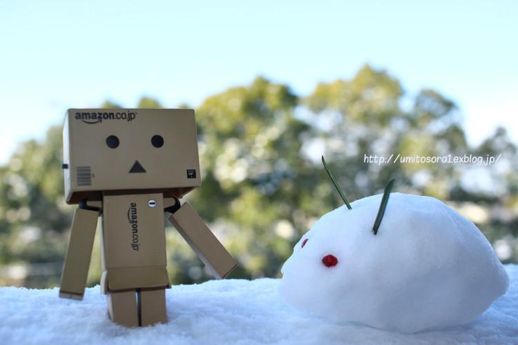 snow♪_b0324291_08562752.jpg