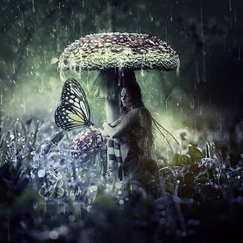 雨の日はやり過ごす_a0037910_12202656.jpg