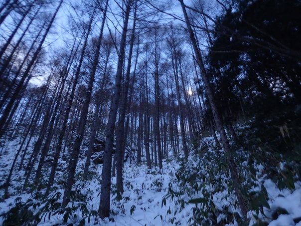 雪山登山への道:後編_b0133032_23261998.jpg