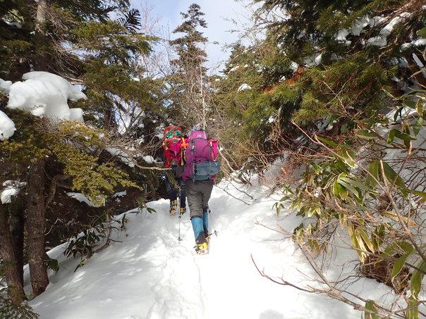 雪山登山への道:後編_b0133032_23315317.jpg