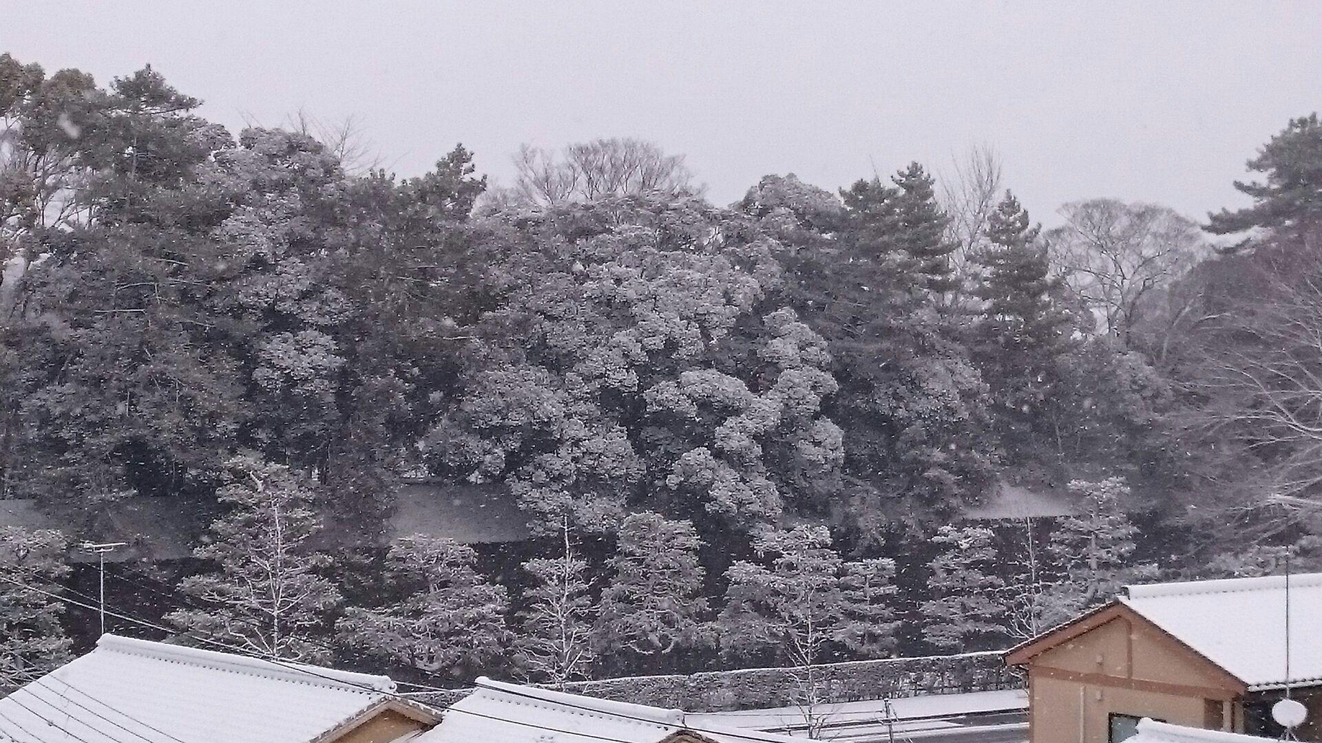 京都に初雪!屋上も真っ白!_f0354437_10045084.jpg