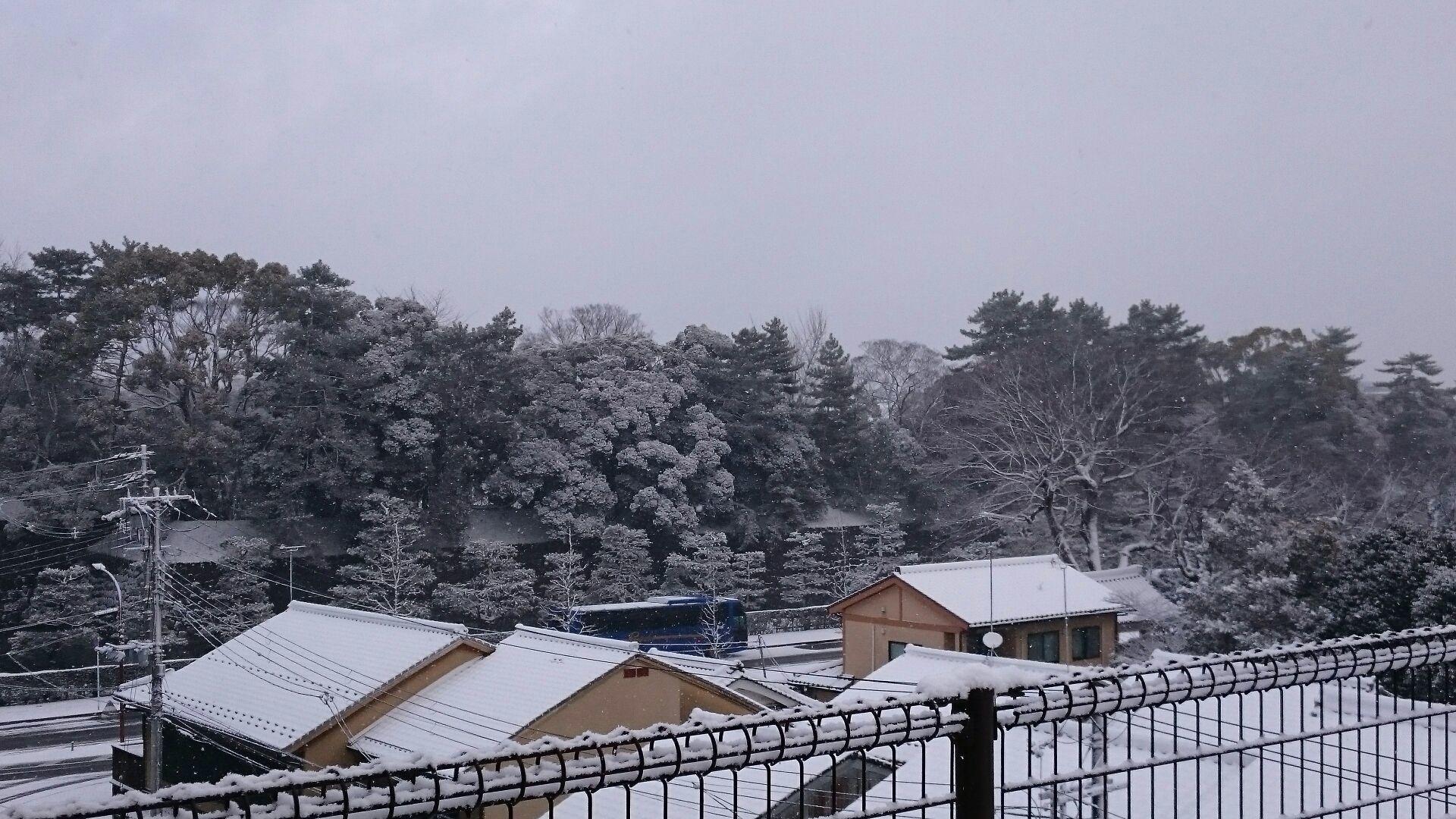 京都に初雪!屋上も真っ白!_f0354437_10045815.jpg