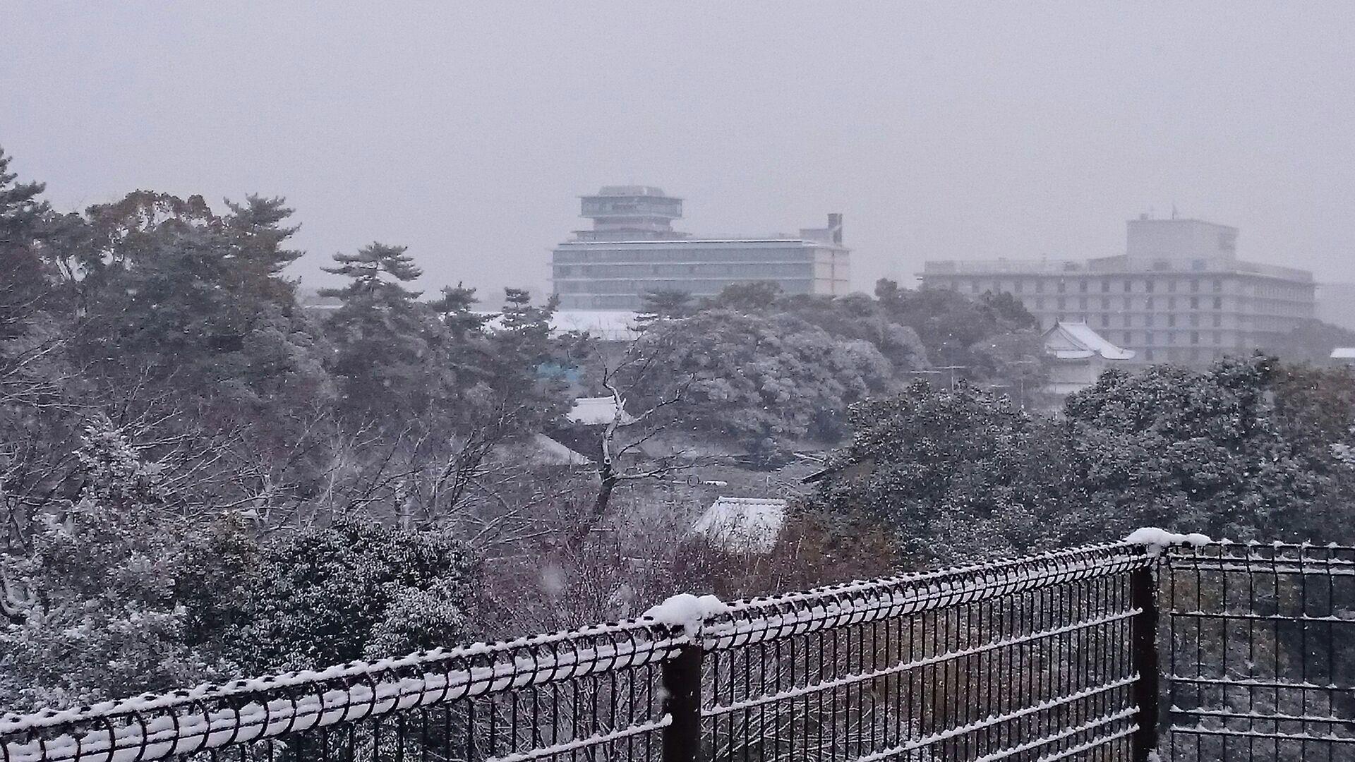 京都に初雪!屋上も真っ白!_f0354437_10050759.jpg