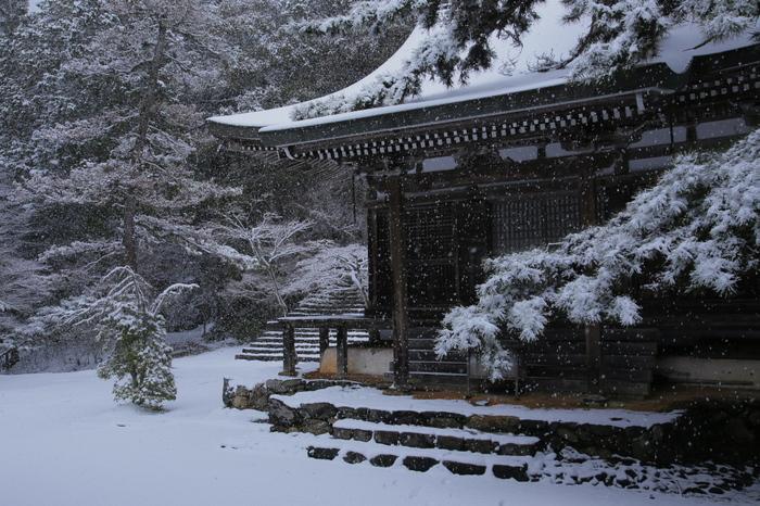 神護寺 雪景色 2016                     _f0021869_0101750.jpg