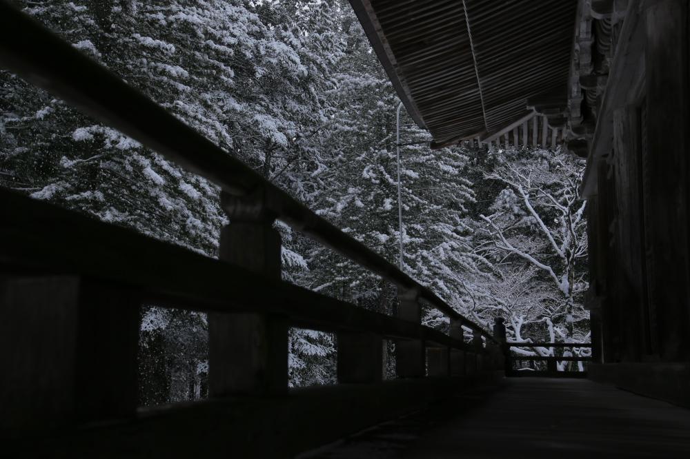 神護寺 雪景色 2016                     _f0021869_010381.jpg