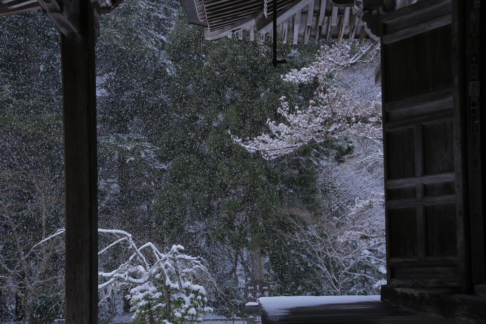 神護寺 雪景色 2016                     _f0021869_061446.jpg