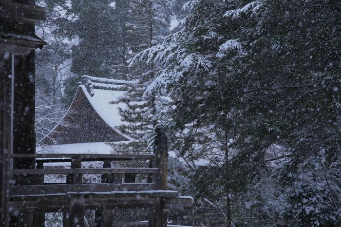 神護寺 雪景色 2016                     _f0021869_062817.jpg