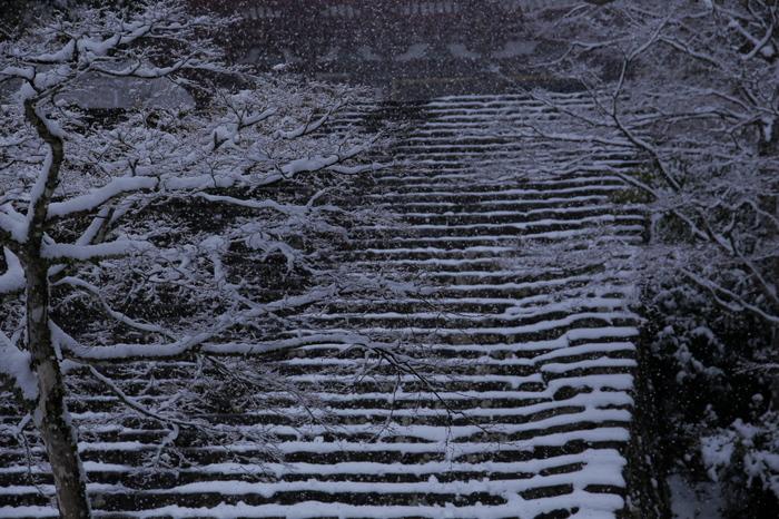 神護寺 雪景色 2016                     _f0021869_074197.jpg