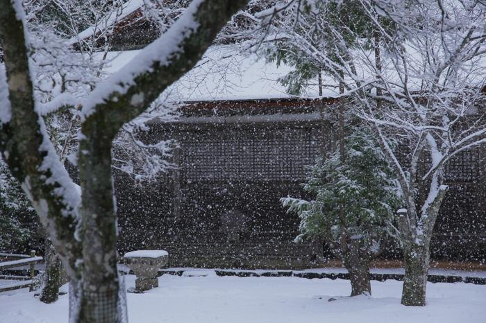 神護寺 雪景色 2016                     _f0021869_094235.jpg