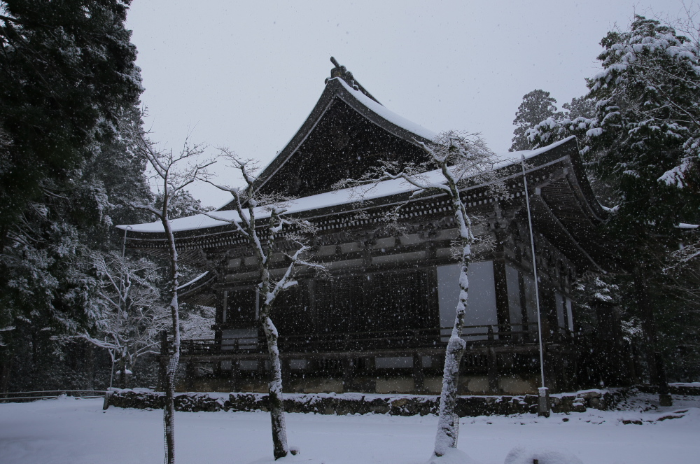 神護寺 雪景色 2016                                 _f0021869_23472610.jpg