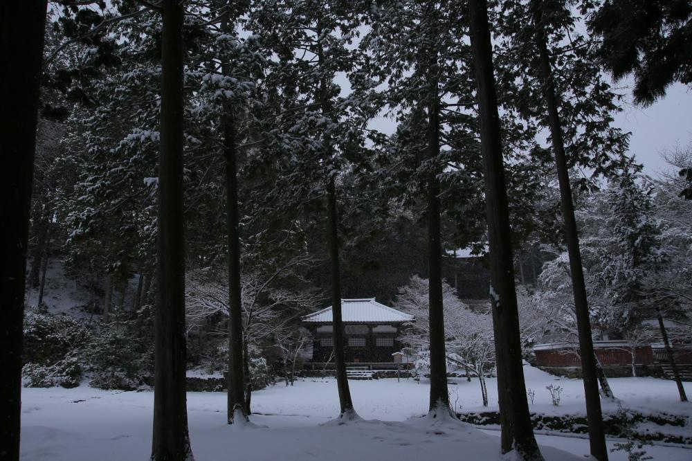 神護寺 雪景色 2016                                 _f0021869_23474828.jpg