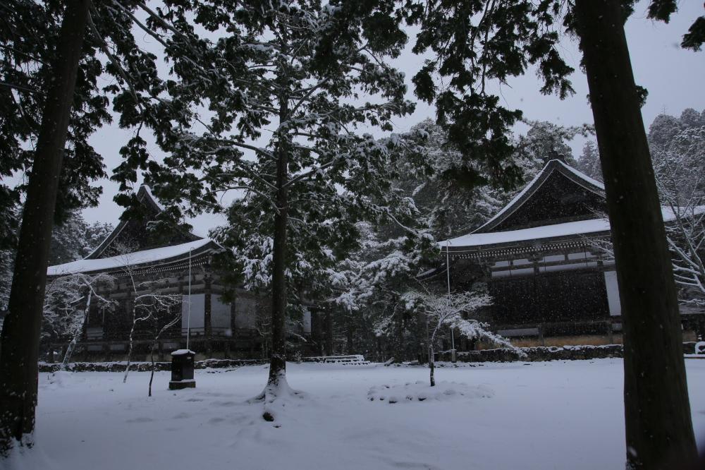 神護寺 雪景色 2016                                 _f0021869_23481193.jpg