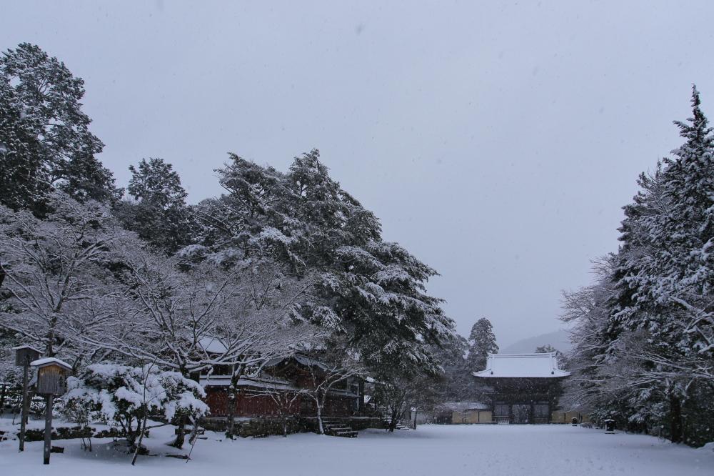 神護寺 雪景色 2016                                 _f0021869_23485053.jpg