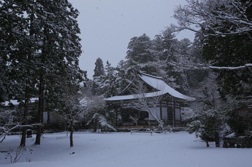 神護寺 雪景色 2016                                 _f0021869_23491557.jpg