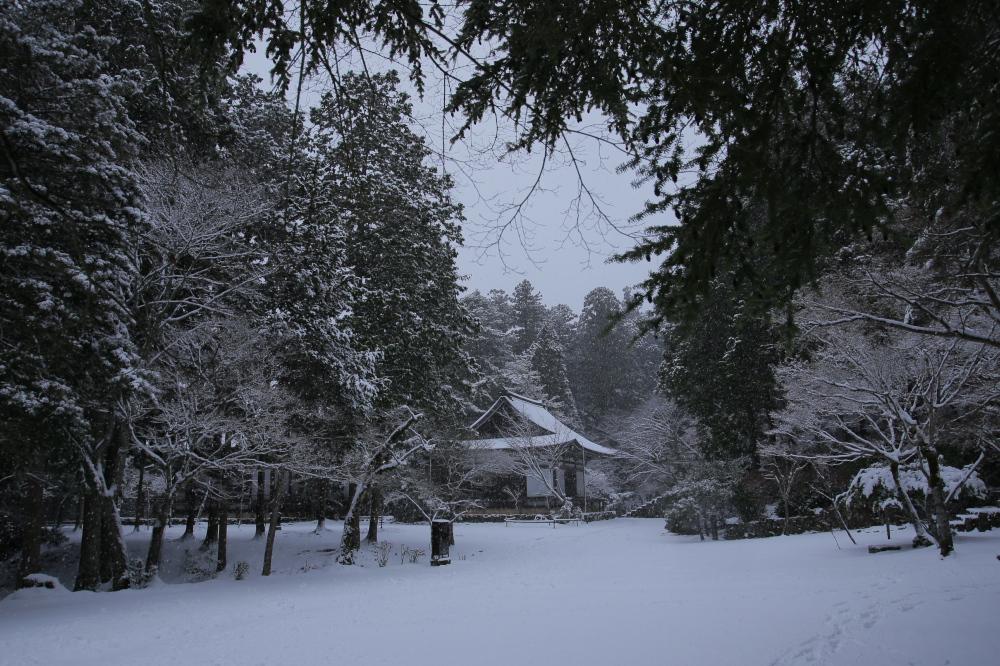 神護寺 雪景色 2016                                 _f0021869_23493233.jpg