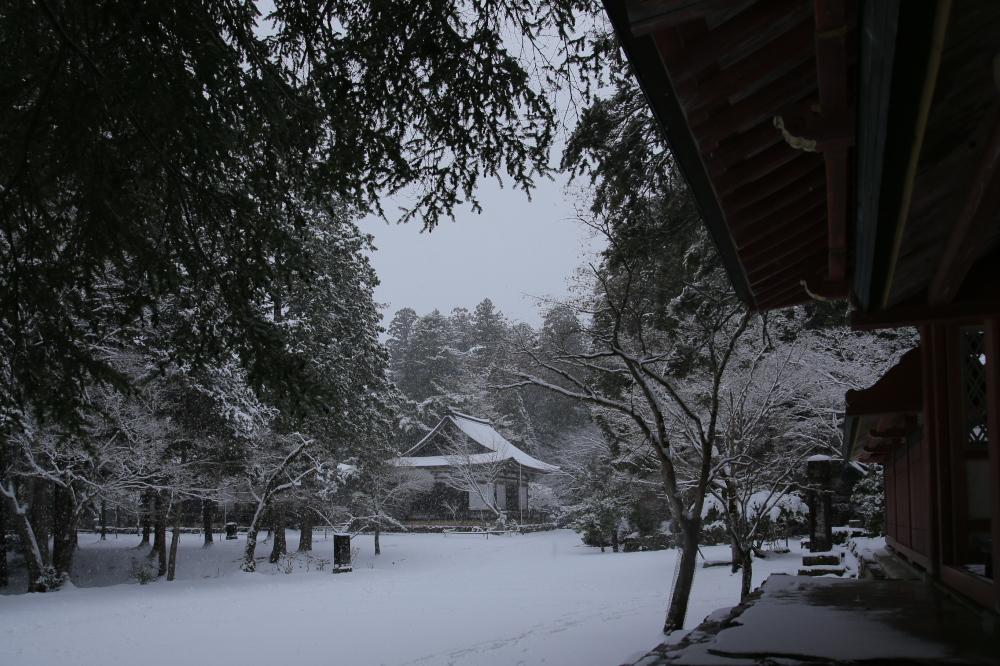 神護寺 雪景色 2016                                 _f0021869_23495331.jpg