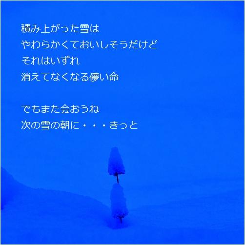 b0154475_2058437.jpg