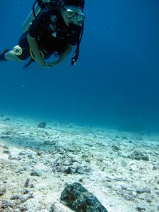 初インド洋で♪_f0144385_18581184.jpg