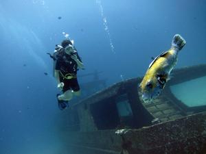 初インド洋で♪_f0144385_18581300.jpg