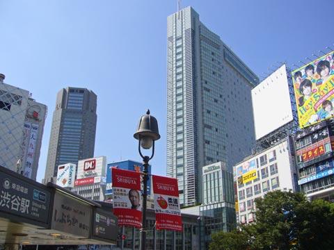 ーー2月、中頃!の、東京の気温!が、気になる!わ~。ーーハハハーー。_d0060693_1813169.jpg
