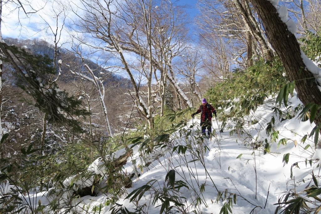 多峰古峰山、1月22日_f0138096_2341565.jpg