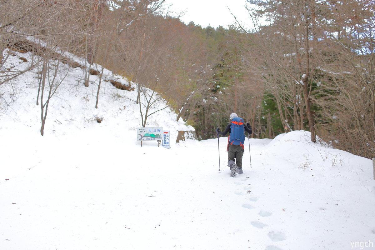 雪の三つ峠山断念記(1)_f0157812_08325187.jpg