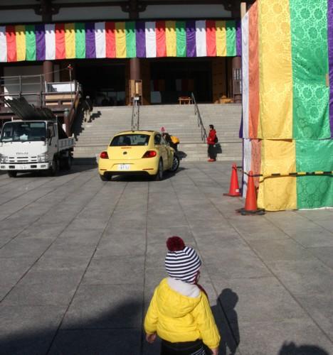 黄色のハーモニー_f0055131_15142792.jpg