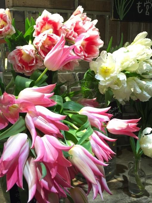 春がくるとき_a0103940_01202438.jpg