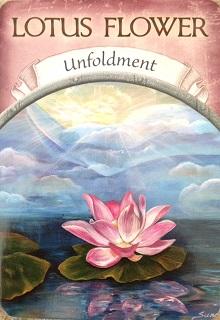 〝瞑想会〟延期 のお知らせ_a0340643_11462284.jpg