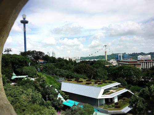 シンガポールへGo!Part5_e0292546_08264105.jpg