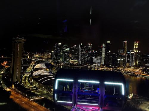 シンガポールへGo!Part6_e0292546_10090114.jpg