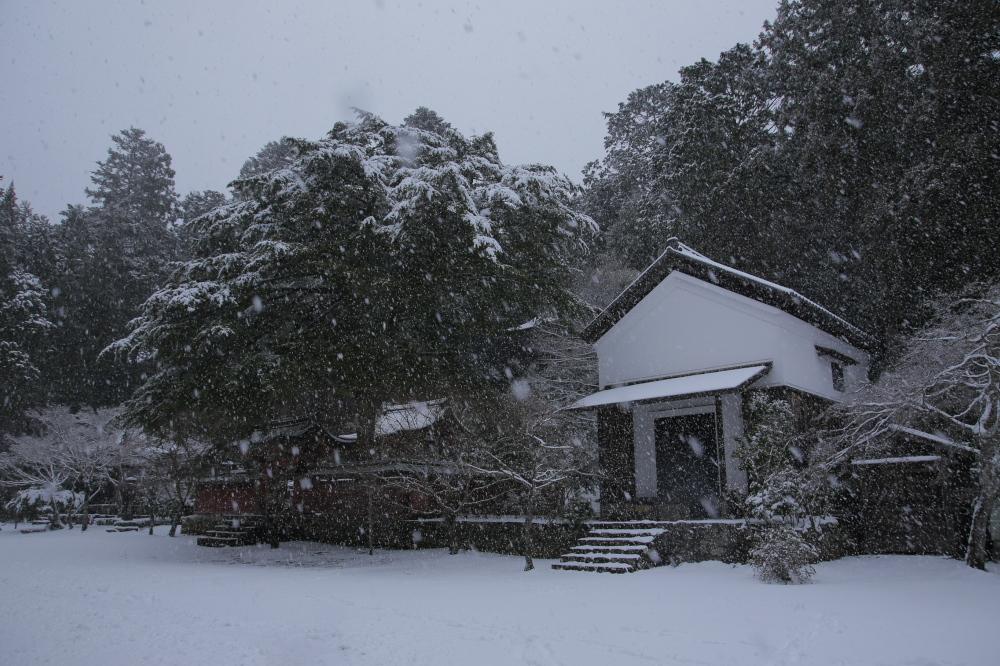 神護寺 雪景色 2016                                 _f0021869_23142584.jpg