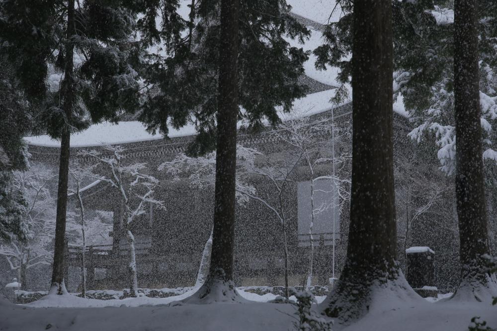 神護寺 雪景色 2016                                 _f0021869_23173420.jpg