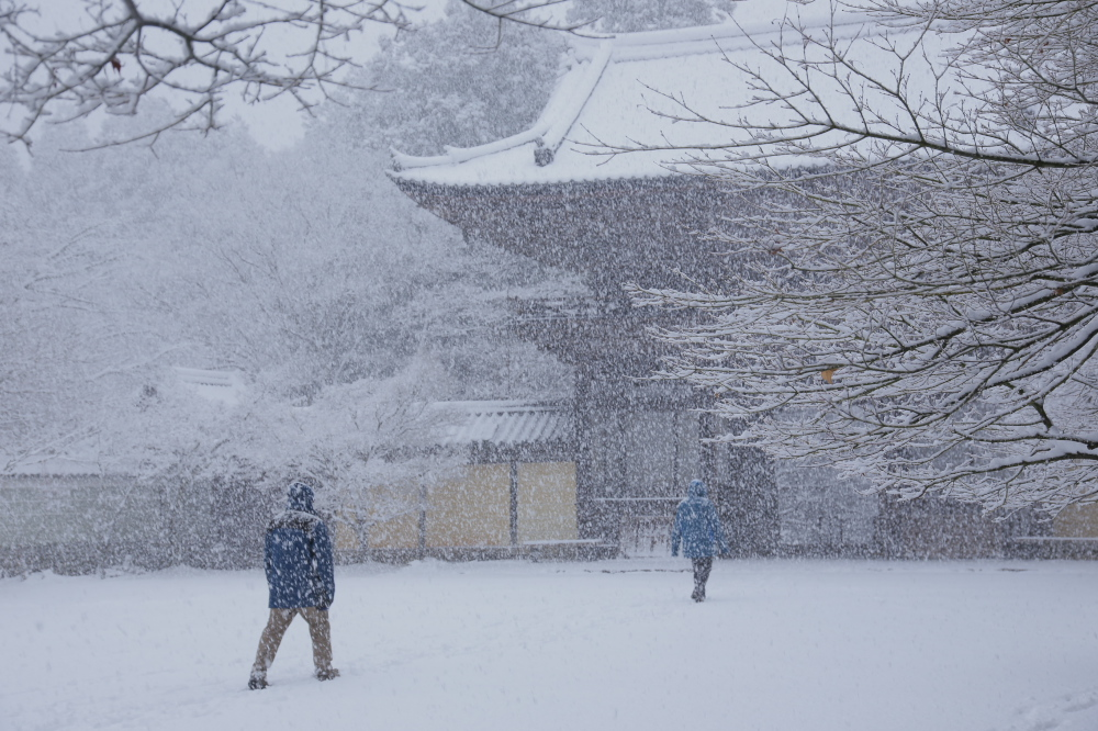 神護寺 雪景色 2016                                 _f0021869_23185592.jpg