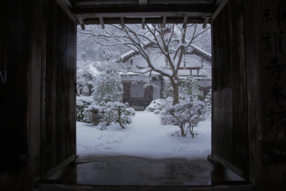 神護寺 雪景色 2016                                 _f0021869_2319536.jpg
