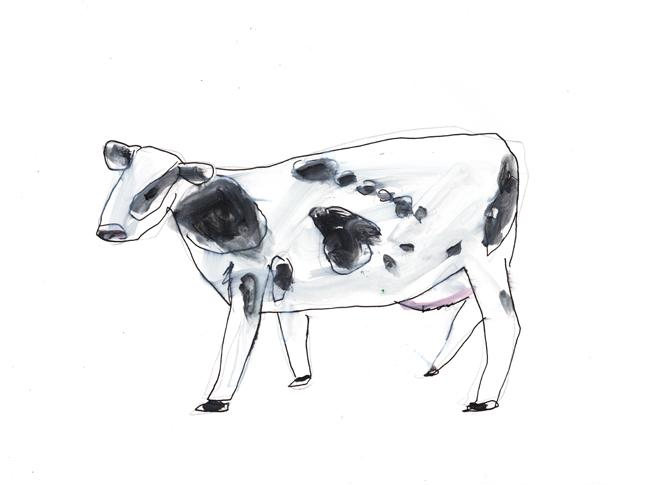 Cattle_c0154575_3461389.jpg