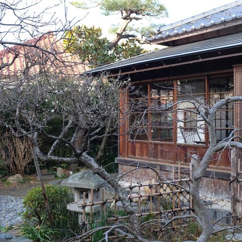 鎌倉の友人_f0099102_1313668.jpg