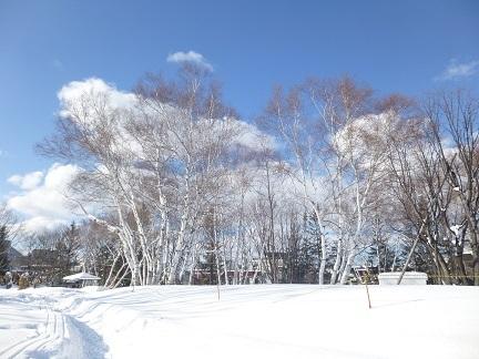 雪遊びと料理教室_b0198109_22325703.jpg