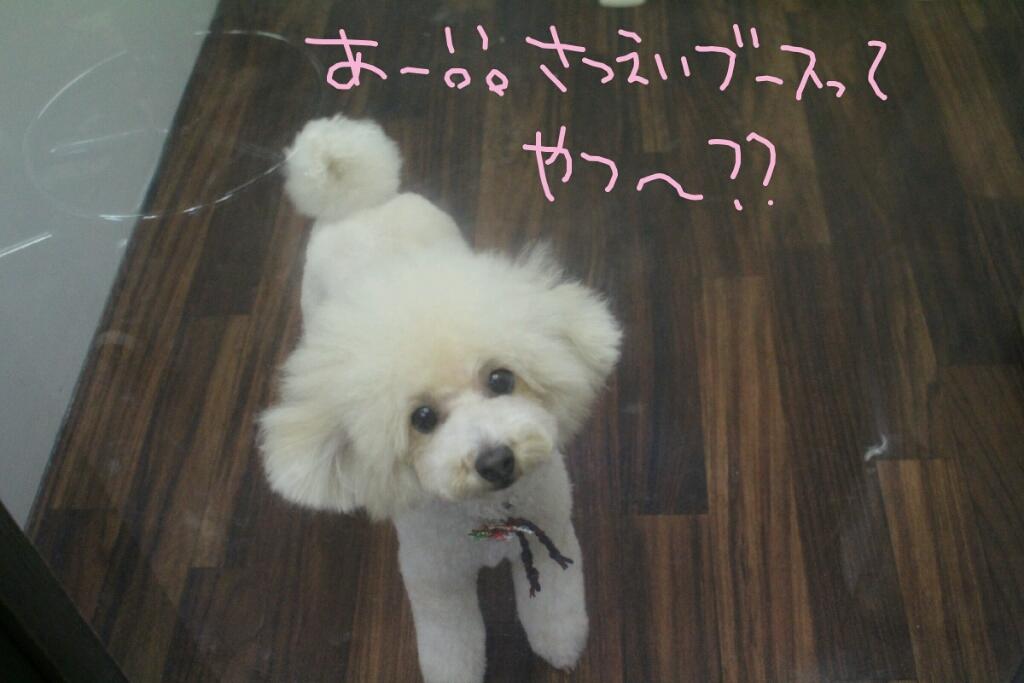 ドラマ_b0130018_21135053.jpg