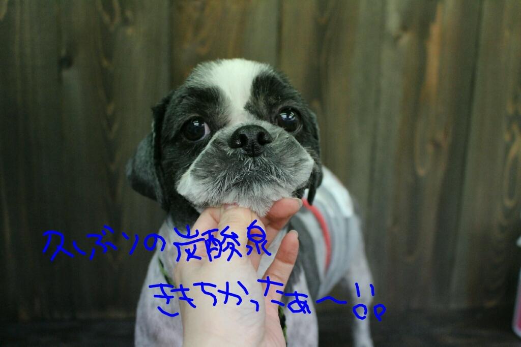 ドラマ_b0130018_21191150.jpg