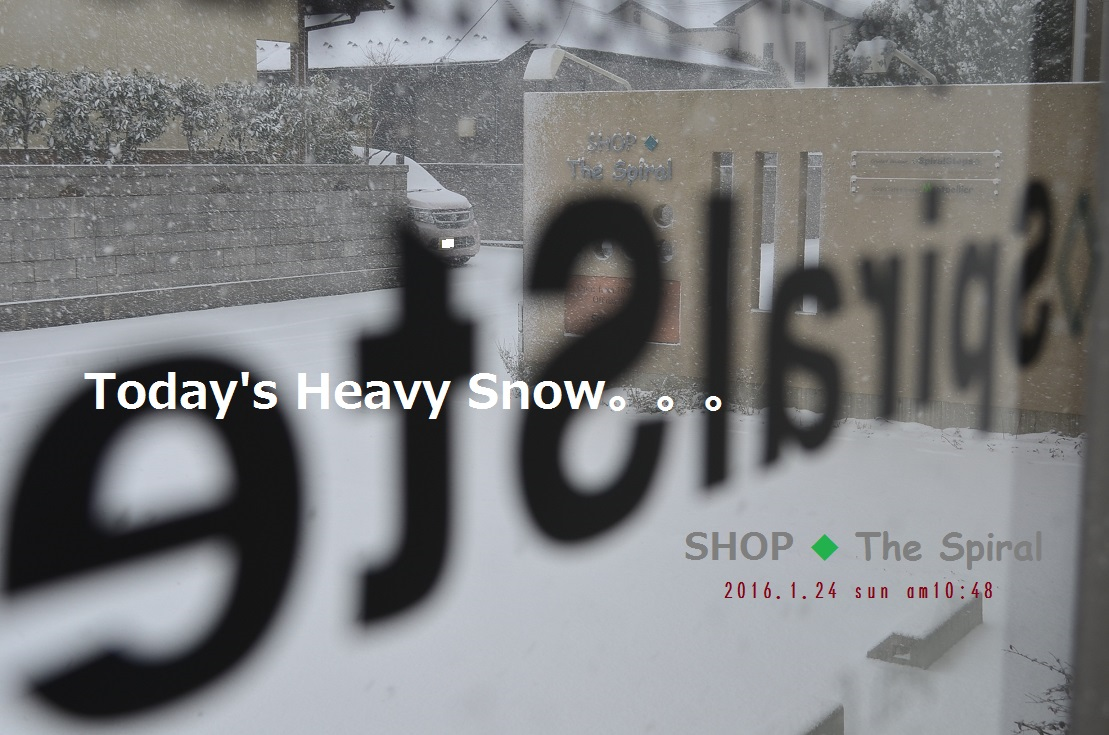 """Today\'s Heavy Snow 1/24 in the morning。。。 ""_d0153941_11164298.jpg"
