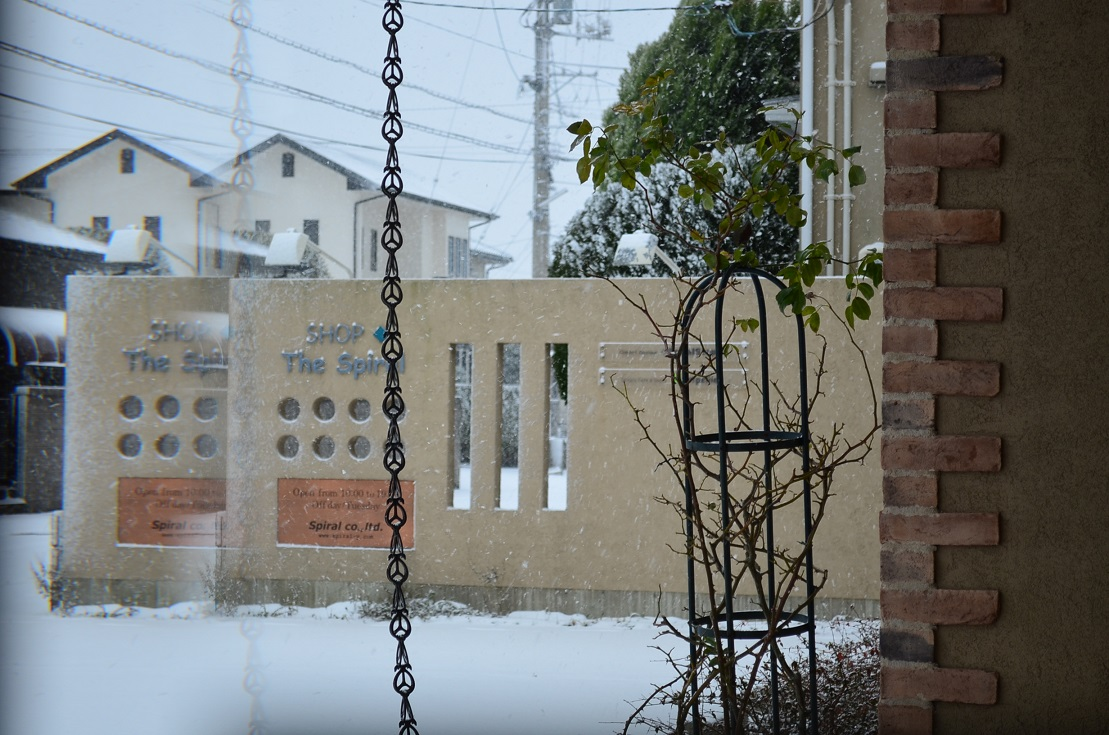 """Today\'s Heavy Snow 1/24 in the morning。。。 ""_d0153941_11173133.jpg"