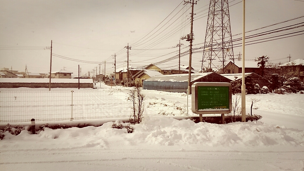 大雪⛄_c0357454_22540183.jpg