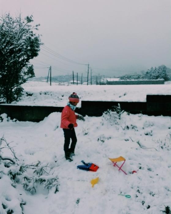 雪だー!_f0131255_12075971.jpg