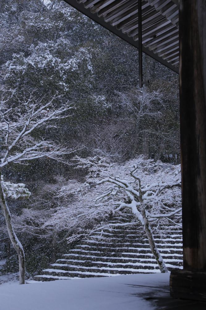 神護寺 雪景色 2016                                 _f0021869_21492660.jpg