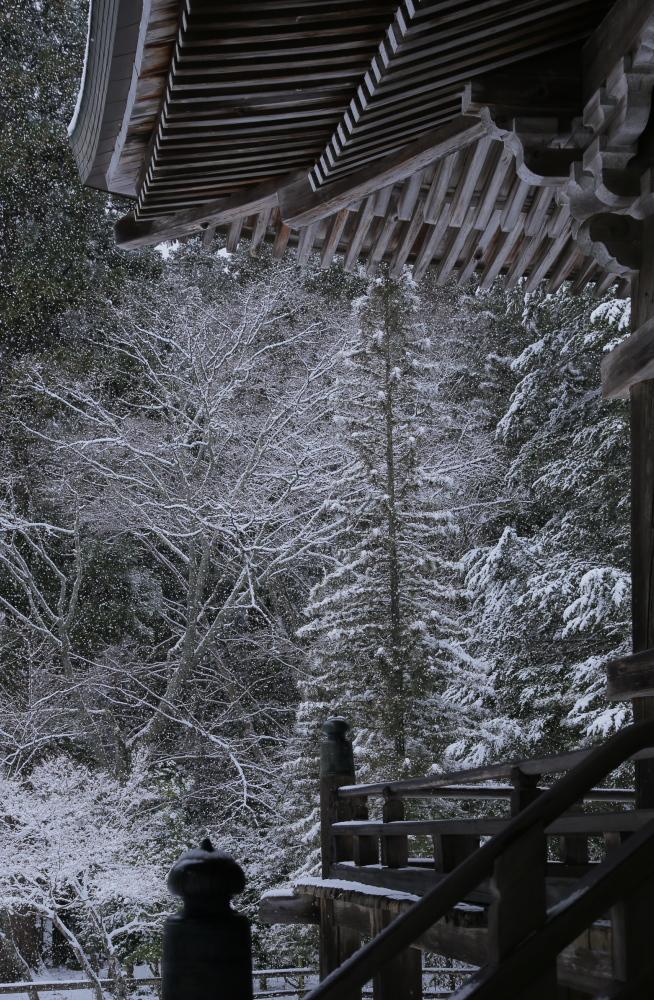 神護寺 雪景色 2016                                 _f0021869_21495046.jpg