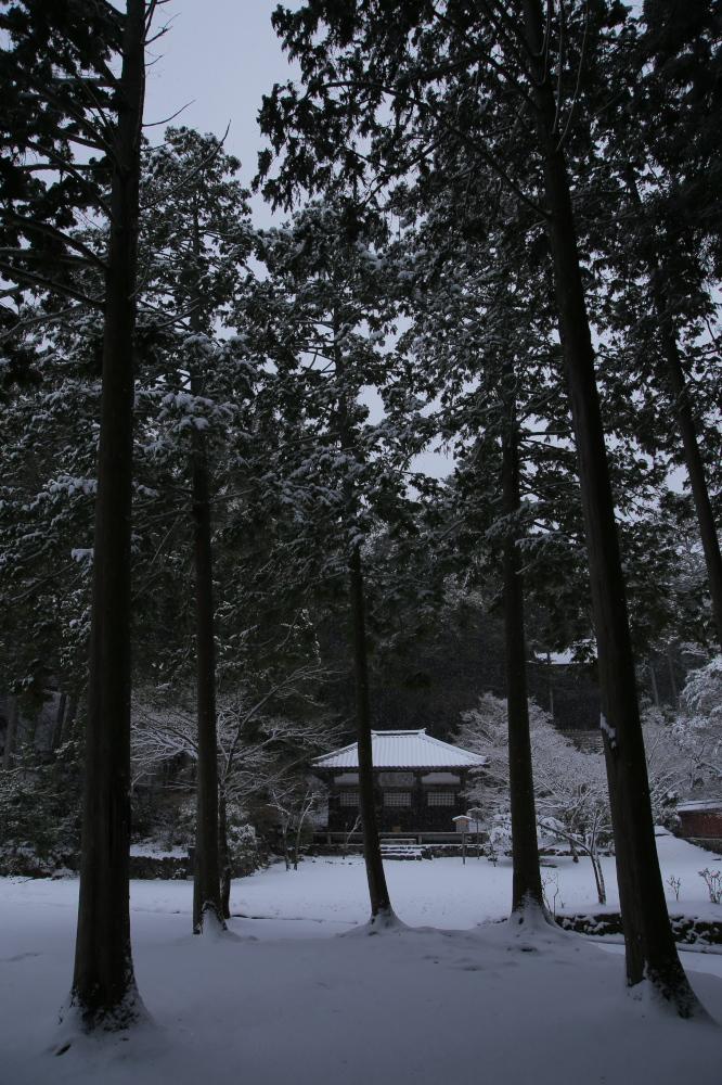 神護寺 雪景色 2016                                 _f0021869_21501490.jpg