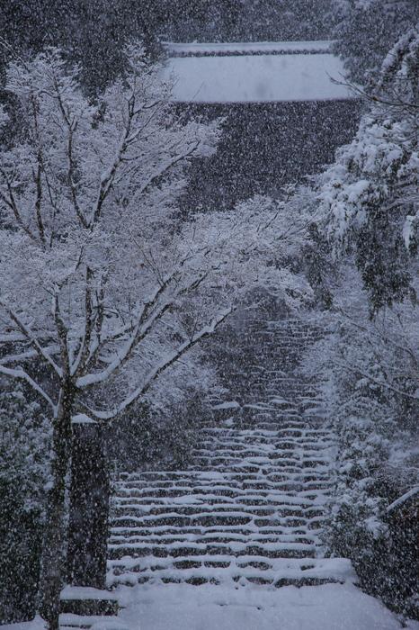 神護寺 雪景色 2016                                 _f0021869_21504539.jpg