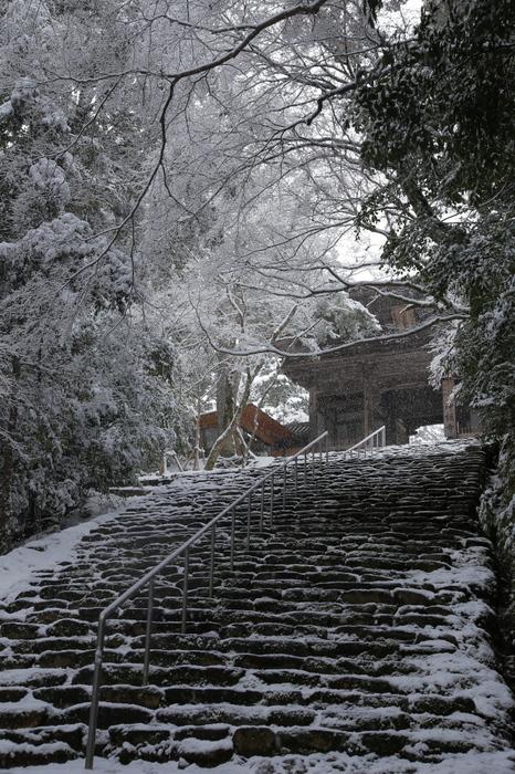 神護寺 雪景色 2016                                 _f0021869_2151154.jpg